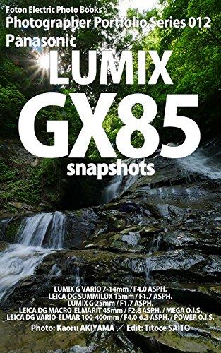 Foton Electric Photo Books Photographer Portfolio Series 012 Panasonic LUMIX GX85 snapshots (English Edition)