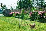 Kerbl Filet À Volailles Poultrynet Vert, Non Électrifiable, Double Pointe, 25m, 106cm pour Élevage/Agriculture Urbaine