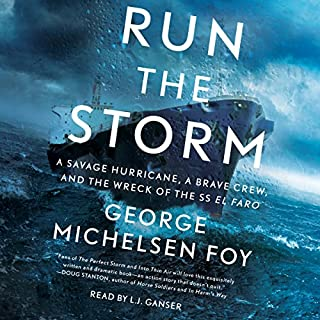 Run the Storm audiobook cover art