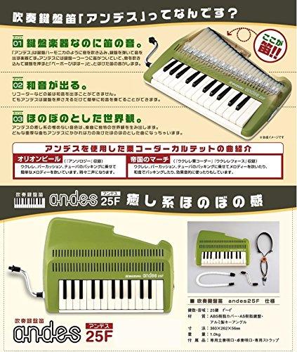 SUZUKIスズキ鍵盤リコーダーアンデスandes25F鍵盤楽器なのに笛の音和音も奏でられる鍵盤リコーダーグリーン
