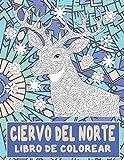 Ciervo del norte - Libro de colorear