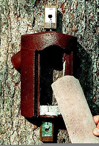 Schwegler Naturschutzprodukt Baumläuferhöhle Typ 2B räubersicher Nisthilfe Nisthöhle Vogelhaus Satz 2 Stück