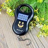Dthlay Küchenwaagen Heißer Tragbare Digitale Gepäckwaage Travel Electroni Mini Hängende Messwerkzeuge Gramm Precision Balance Pocket LCD-50KG