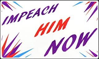 It's Time To Impeach Bumper Sticker - Dump Trump Anti-Trump Decal Single ~ For Warren Stickers ~ Democratic Decals ~ No More Lies ~ Want Truth & Justice? 2020 Election Biden Bernie Harris Pete 5