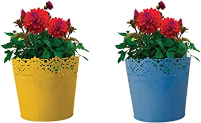 TrustBasket Set of 2 - Half Lace Finish Yellow and Blue Plantes