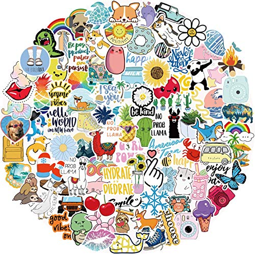 Stickers for Water Bottles, 100 Pack/PCS Hydroflask Stickers Aesthetic Waterproof Cute Vsco Vinyl Stickers Laptop Skateboard Luggage Computer Stickers for Teens Girls Kids