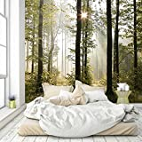 murimage Fototapete Wald 274 x 254 cm Bäume Sonne Tapete 3D Effekt Natur inklusive Kleister