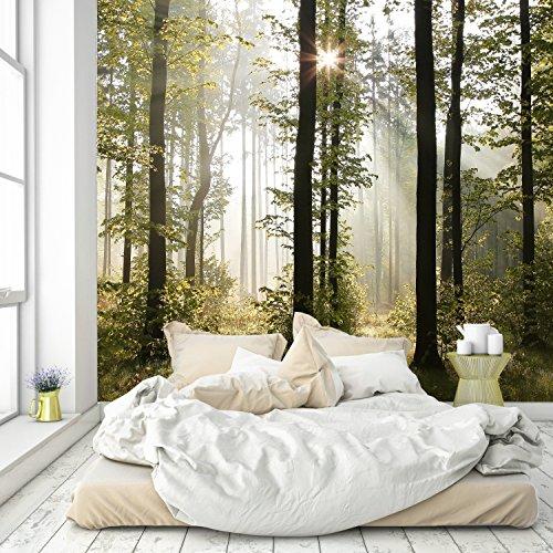 Papel Pintado Bosque 274 x 254 cm Incluyendo Pegamento Fotomurales Vista 3D Madera árboles luz del Sol Living Sala