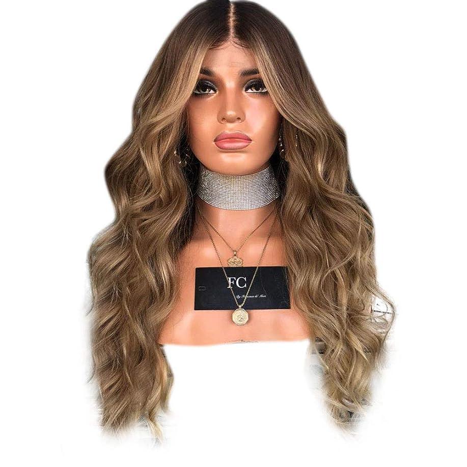 鳴らすメッセージ応答YESONEEP 女性の気質ライトブラウンミディアムロングカーリーヘアーマイクロロールロングストレートヘア染めウィッグ複合毛レースウィッグロールプレイングかつら (色 : 淡い茶色, サイズ : 65cm)