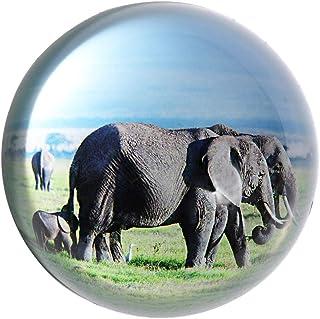 جراب HanUR كريستال من الورق المقوى نصف الكرة الأرضية من الزجاج لتزيين المكتب (الفيل 1)