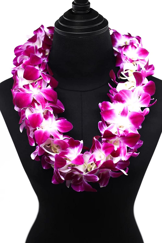 Fresh Hand Made Cheap sale OFFicial shop Single Dendrobium - Lei Purple Orchid