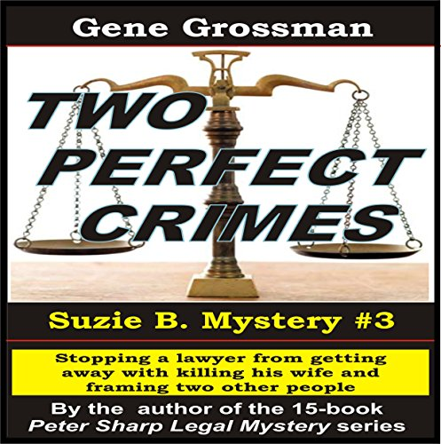 Two Perfect Crimes audiobook cover art