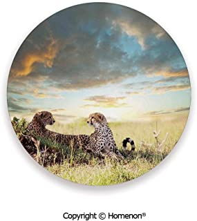 Two Cheetahs Africa Nature Grass Dangerous Animals,Absorbent Ceramic Coasters For Drinks Rainy Weather Picture,3.9×0.2inches(8PCS),Great Gift For Unisex Adults Teens