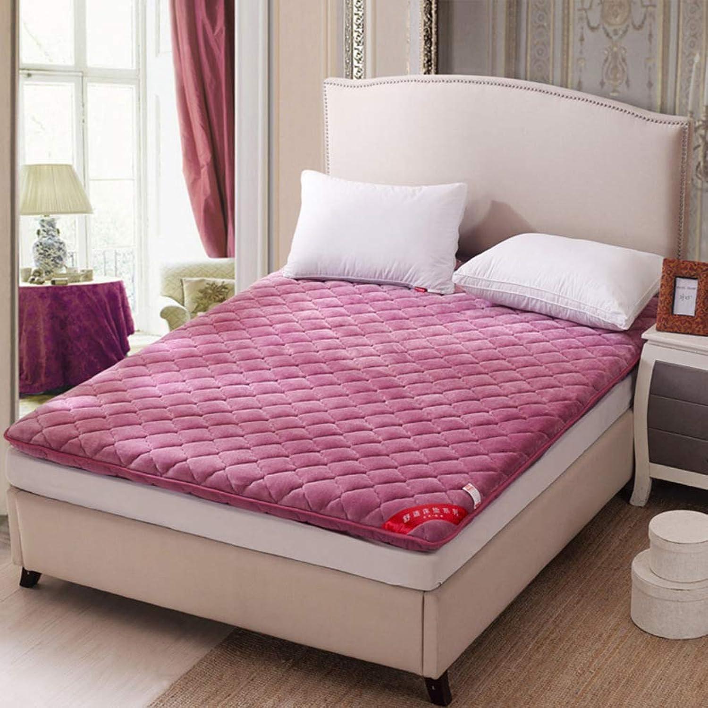 Thickened Folding Tatami Mattress, Flannel Mattress Topper Soft Keep Warm Ground Floor Sleeping pad-F 100x200cm(39x79inch)