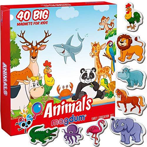 MAGDUM Zoo + Fattoria Animali 40 Calamite Bambini – Grandi Calamite frigo Bambini – Magneti per Bambini – Giochi Bambini 3 Anni – Giochi educativi Calamite per Bambini-Grandi Magneti per Frigorifero