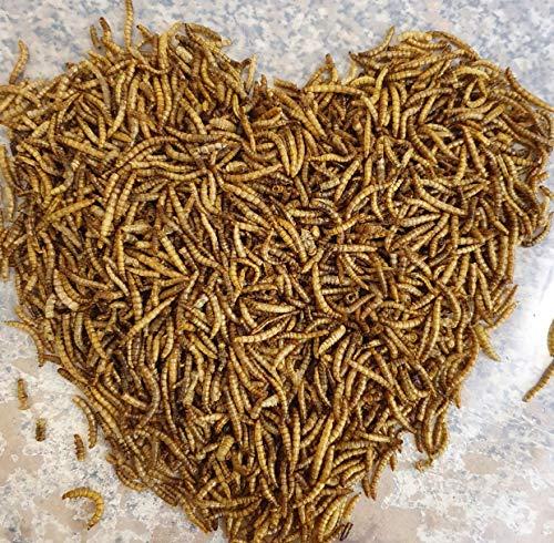 SAHAWA Vers de farine séchés - Sachet de 1 litre