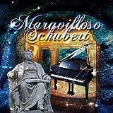 Maravilloso Schubert – Las Mejores Piezas de Franz Schubert, Música Clásica para Todos, Impromptus & Fantasy de Schubert, Obras de Arte, Composiciones para Una Escucha Agradable