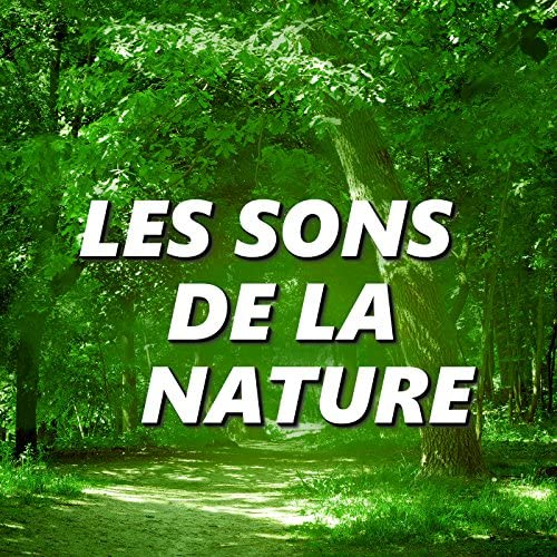 Les Sons De La Nature