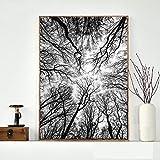 JNZART Schwarzweiss-Baum-Malereien ummauern dekorative Bilder für Wohnzimmer-Leinwand-Druck-Plakat-Moderne Landschaftskunst 30X45CM