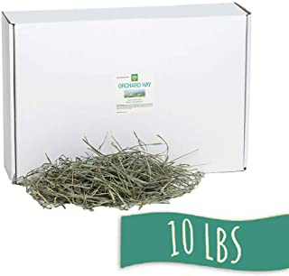 Small Pet Select Orchard Grass Hay Pet Food