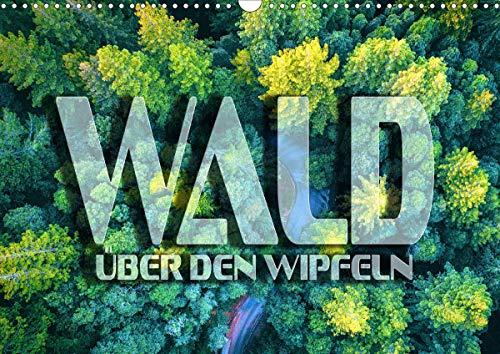 Wald - über den Wipfeln (Wandkalender 2021 DIN A3 quer)