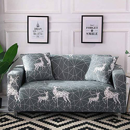 DYR Funda de sofá Estampada, Funda de sofá de Dos plazas elástica, Funda de sofá con diseño Elegante, Protector de Muebles con Base elástica para sofá de 1 2 3 4 Cojines