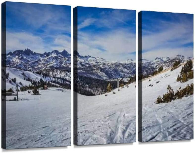 YKing1 Mammoth Mountain ski Trail A Sales of SALE items from new works and Wall Pictures Snowboards Sale item
