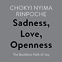 chokyi nyima rinpoche books