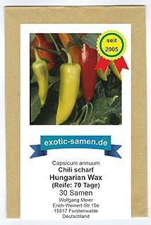 Mittelscharfes Chili - Peperoni - auch gut zum Einlegen in Essig - Hungarian Wax - 30 Samen