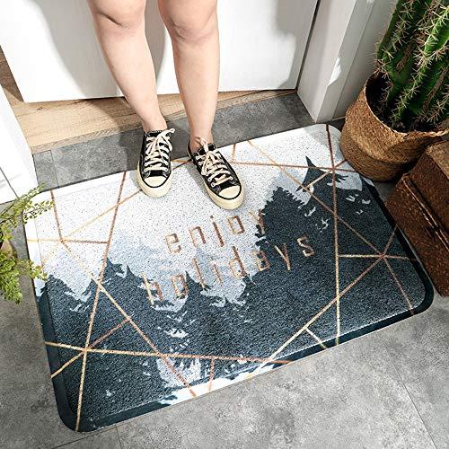 Milieuvriendelijk PVC Dust-verwijderen Huishoudelijke Floor Mats Huis toegankelijke Non-slip voet Mats Tapijt-4.7 (Color : Poetry and distance, Size : 45 * 75cm)