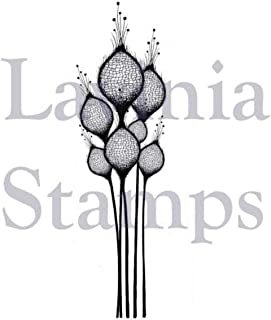 Lavinia Stamps - Fairy Thistles (LAV378)