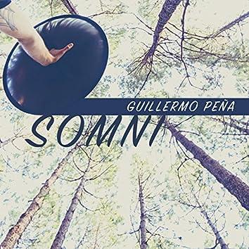 -Hang Experience: Somni
