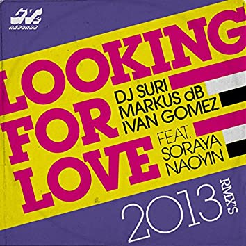 Looking for Love 2013