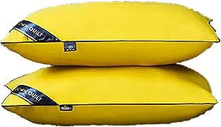 YLME 2 Paquetes Almohadas Cama Fibra Lujo 19X29 Pulgadas, Alergias No Alergénicas Suaves para Dormir, Soporte Rebote Apoyo Virgin Hollow Fibra Llena Almohadas,B,Medium Pillow750g