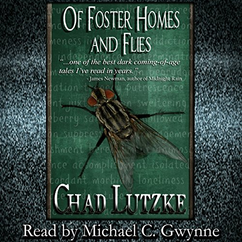 Of Foster Homes and Flies audiobook cover art