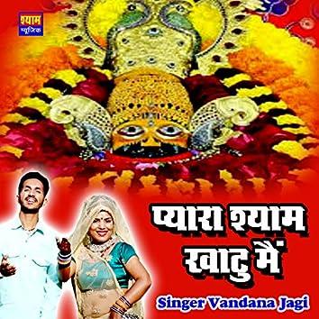Pyara Shyam Khatu Me