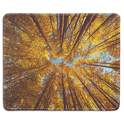 dealzEpic - Art Mousepad - Natural Rubber Mouse Pad Printed with Low Angle Shot of Yellow Trees in Autumn - Stitched Edges - 9.5x7.9 inches