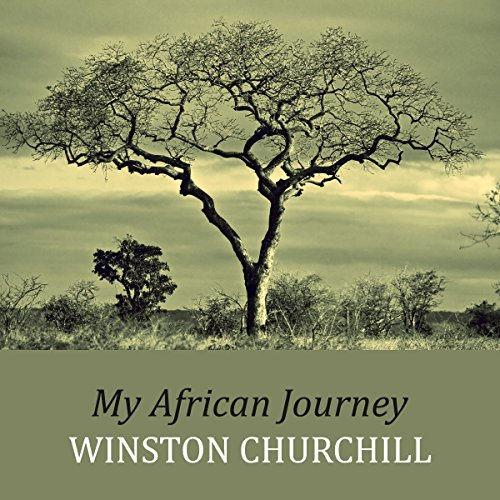 My African Journey audiobook cover art