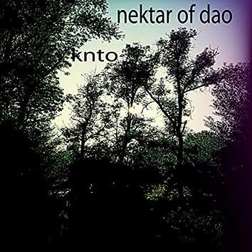Nektar of Dao