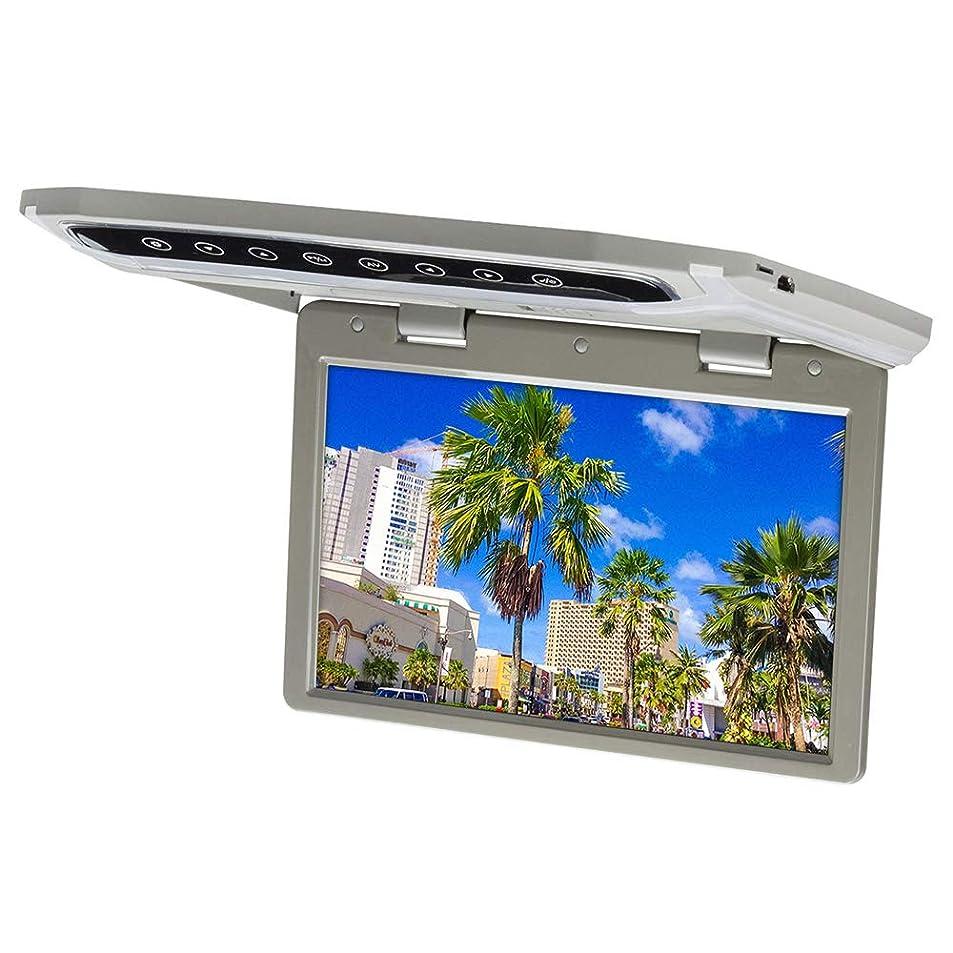 装置ドライバ冗談でアイリスプラザ カー用品 車 フリップダウンモニター 10.2インチ 液晶 グレー LEDルームランプ搭載 薄型 角度調整 F-0102-HD-GR