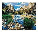 TOCARE Kit de peinture par numéros pour adultes et enfants Parc National Yosemite