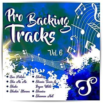 Pro Backing Tracks S, Vol.6