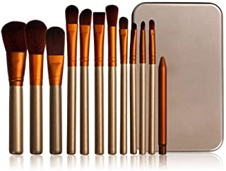 Set Of 12 Naked 3 Power Cosmetic Make Up Brushes By Urban Decay With Hard Case