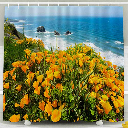 Crannel Waterproof Shower Curtains,Shower Curtain for Bathroom Field California Poppies The Pacific Ocean Coast Near Mendocino 66X72Inches Decoration Eco-Friendly Shower Curtain,Blue Turquoise
