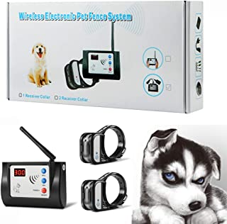 Best dog fence training Reviews