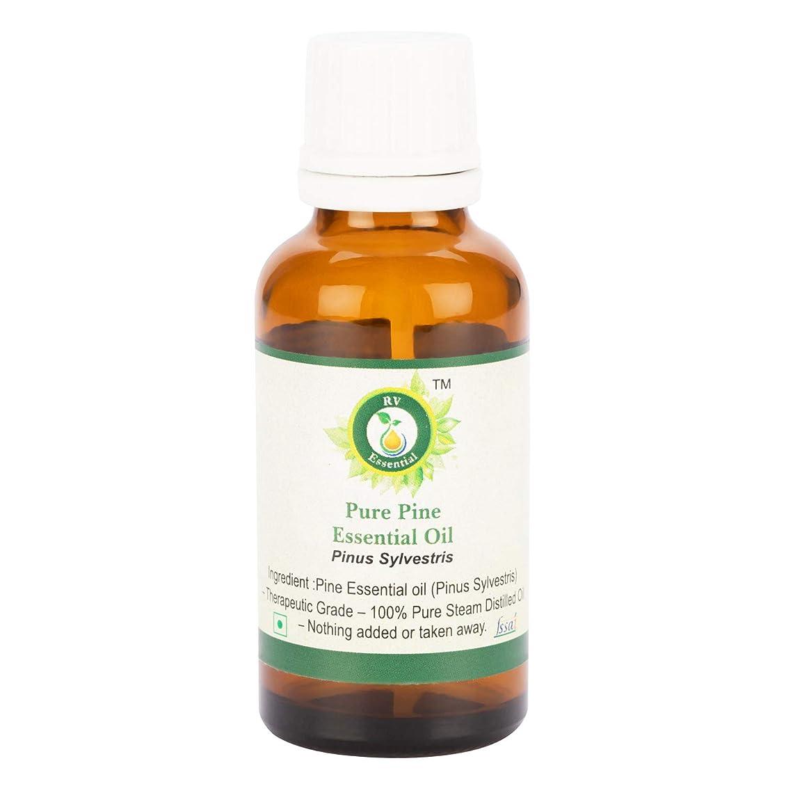 ジャーナリスト留め金教ピュアパインエッセンシャルオイル300ml (10oz)- Pinus Sylvestris (100%純粋&天然スチームDistilled) Pure Pine Essential Oil