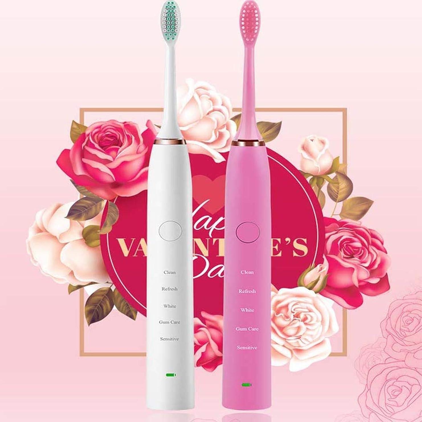 機密アラバマ比率電動歯ブラシ、ミュート防水電動歯ブラシ、恋人自動歯ブラシ充電式、インテリジェントタイミング、USB充電方法