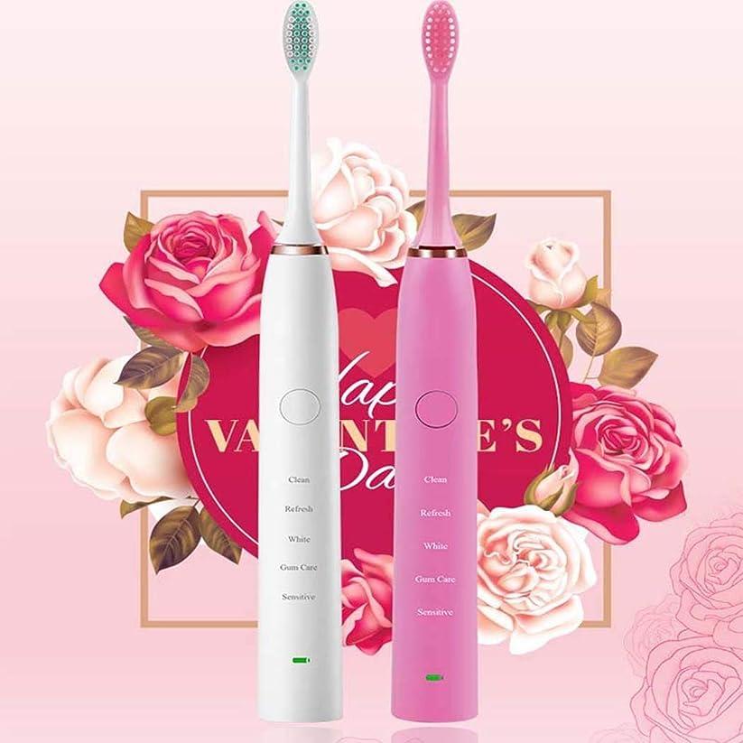 メーター眉をひそめる脳電動歯ブラシ、ミュート防水電動歯ブラシ、恋人自動歯ブラシ充電式、インテリジェントタイミング、USB充電方法