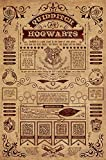 Harry Potter - Movie Poster/Print (Quidditch at Hogwarts) (Size: 24 inches x 36 inches)