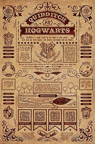 Harry Potter Poster Quidditch at Hogwarts Quidditch Regeln (Englisch!)
